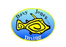 Davy Jones Diving. Scuba diving in Gran Canaria - dive all year at one of the best dive sites, the El Cabrón Marine Reserve