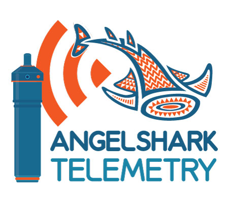 ANGELSHARK TELEMETRY: A project from ElasmoCan that studies the behavior of angelsharks in the Canary Islands, using an acoustic telemetry network.
