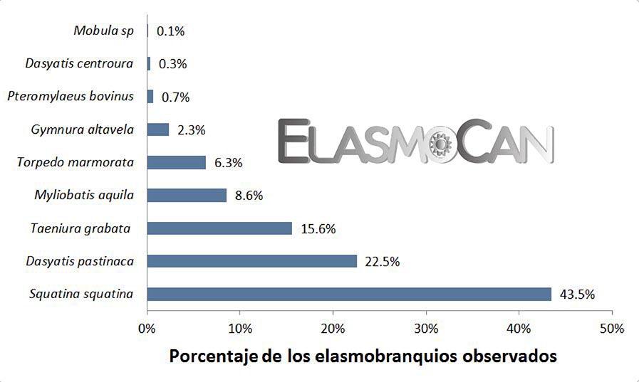 Ciencia Ciudadana ElasmoCan: Avistamiento de los elasmobranquios por buceadores recreativos en El Cabrón (Gran Canaria).