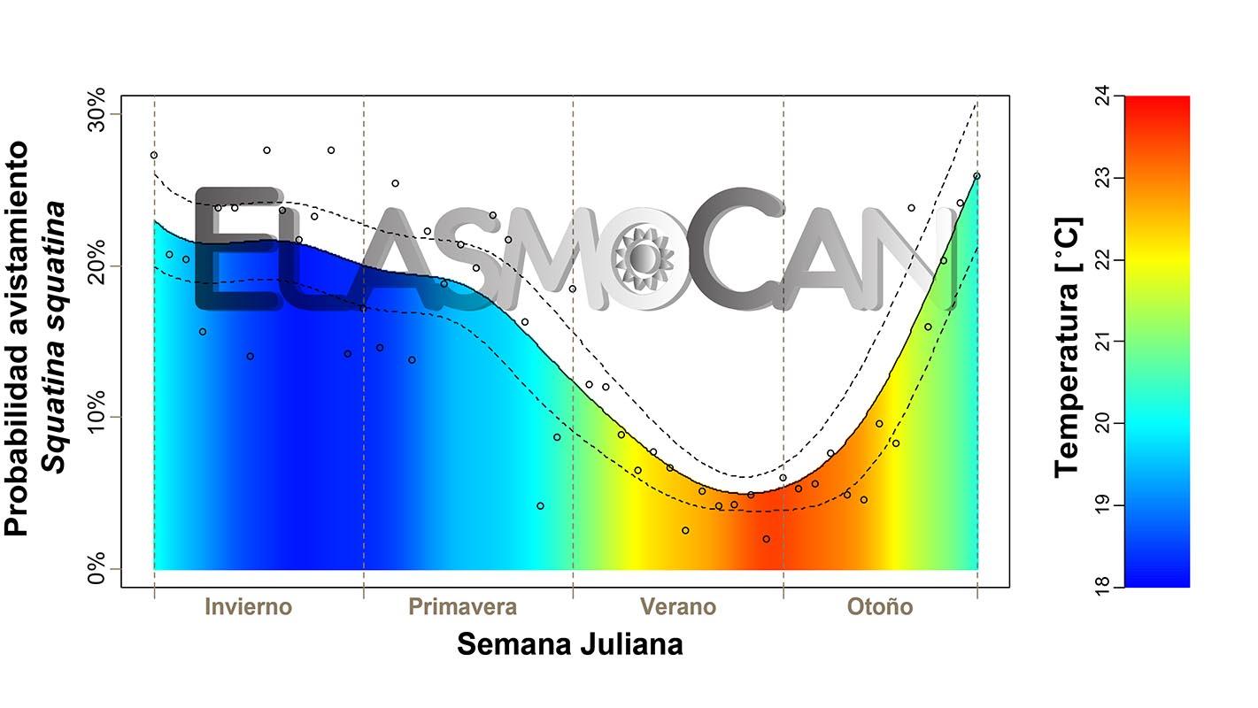 Ciencia Ciudadana ElasmoCan: Avistamientos del angelote Squatina squatina por buceadores recreativos en El Cabrón (Gran Canaria)