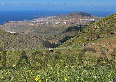Gran Canaria incl. Sardina del Norte (ElasmoCan)