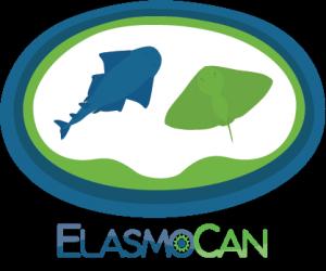 Ciencia ciudadana con la colaboración de buceadores recreativos por ElasmoCan