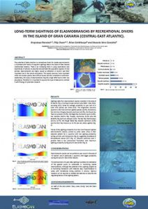 Long-term sightings of elasmobranchs by recreational divers in the island of Gran Canaria (Central-East Atlantic)