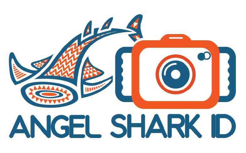 ANGELSHARK-ID: foto-identification of angelsharks