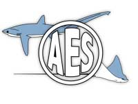 American Elasmobranch Association http://elasmo.org/