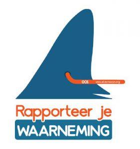 Helps ons met het behoud en onderzoek van de hamerhaaien en rapporteer je waarneming van een haai gemerkt door ElasmoCan